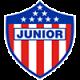 CA Junior